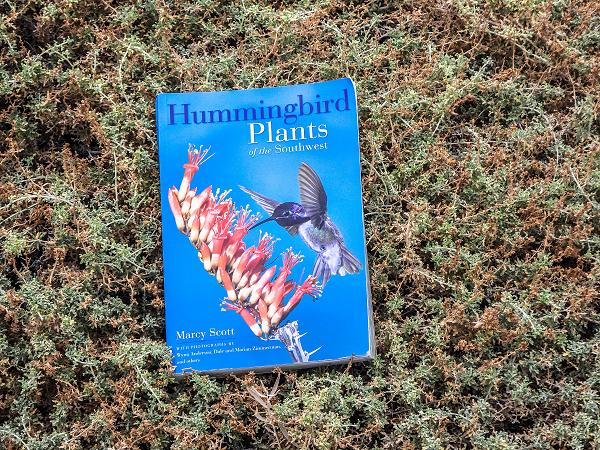 Humminggbirds Plants Of the Southwest