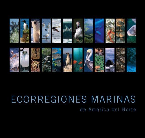 ecorregiones marinas
