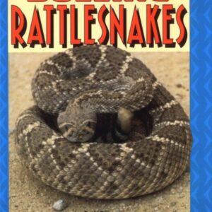 Buzzing rattlesnakes