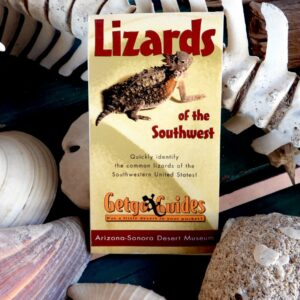 Lizards of the Southwest