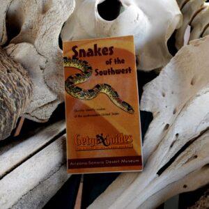 snakes southwest