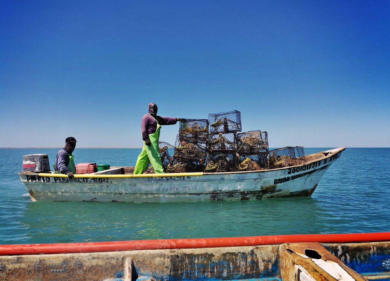 Puerto Peñasco - Puerto Lobos Crab FIP Fishing Improvement Project, Photo: Nélida Barajas