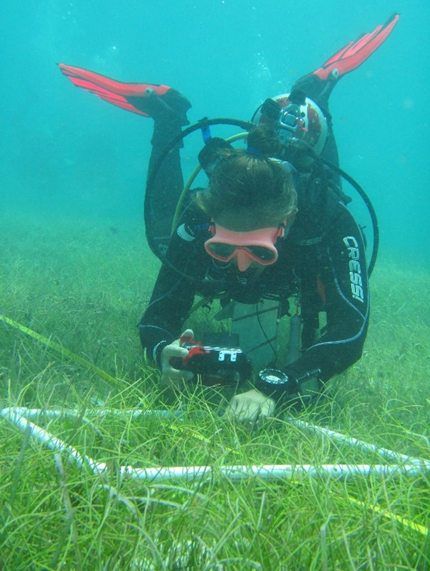 1st Certification Program in Underwater Research Techniques. Puerto Morelos, Mexico, July 2019